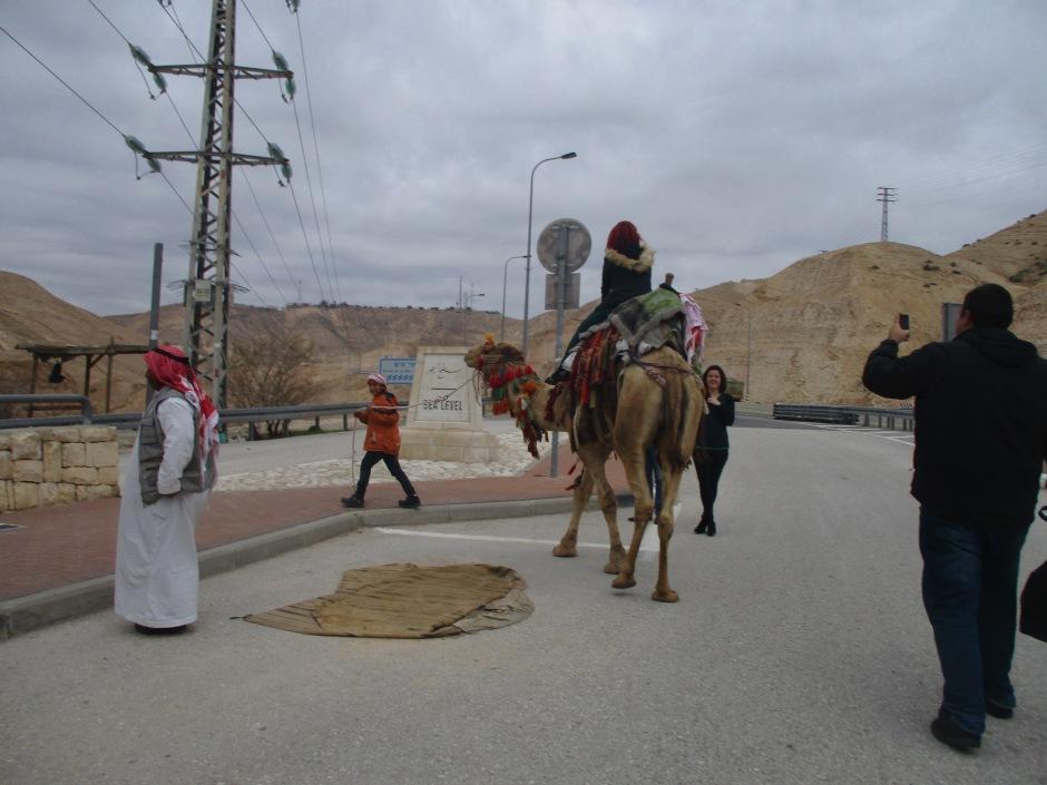 Бедуины-катают-туриста-на-верблюде